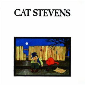 cat-stevens_amazon