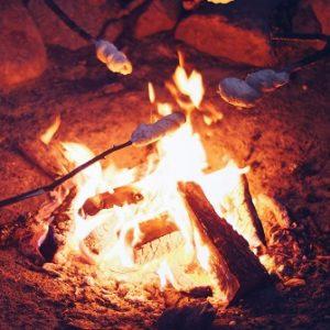 barbecue-bonfire-burn-small